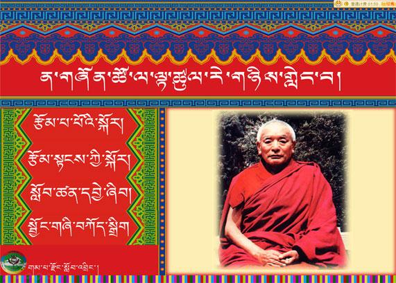 《對青年們所講述的幾個觀點》初二藏語文下冊