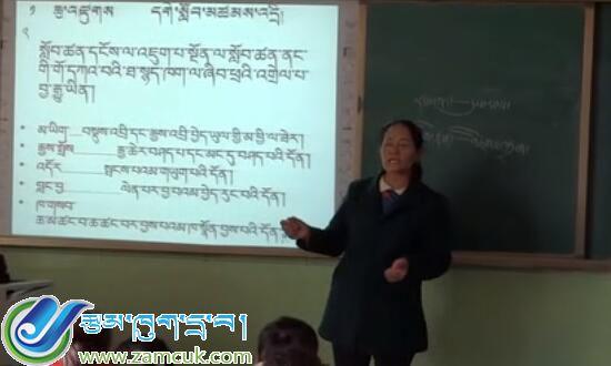 小学藏语文写作知识课堂实录